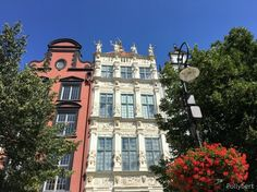 Gdansk astonishes the more you walk around. Especially after seeing pictures how destroyed the city was after WWII. See Picture, Poland, Wwii, Mansions, Couples, House Styles, City, Pictures, Mansion Houses