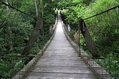 One of the coolest places to visit is The swinging  Bridge in Columbus Junction, Iowa. Also known as Lover's Leap Swinging Bridge. The ledge has it that a heartbroken Indian maiden jumped to her death in the valley below but no one really knows but the trees.Just a little walk in the woods