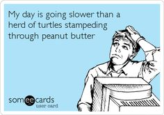 My day is going slower than a herd of turtles stampeding through peanut butter.
