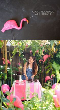 Friends and Family take note! Flamingo shower!