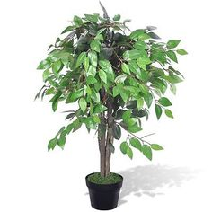 Artificial plants trees #wedding #decor home office fake plant flowers #ficus 90 ,  View more on the LINK: 	http://www.zeppy.io/product/gb/2/221909785733/