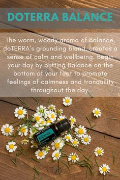 doTERRA's Balance grounding blend combines the perfect Essential Oils that help you to feel calm and safe. What do you love about Balance?