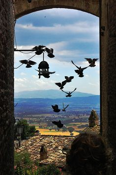 Assisi, Italy. My all-time favorite, spiritual experience of breathing the atmosphere, walking the land and praying in the churches of the beloved Saint Francis.