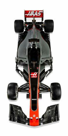 Haas 2017