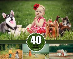 Photo Overlays - great for create you photo more interesting and beautiful.  DESCRIPTION: - 40 file in png format (25x25, 300dpi). The size of animals