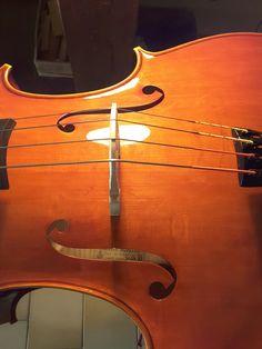 Cello made by Roberto Delfanti Cremona Italy