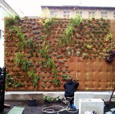 Vertiko GmbH - Wandbegrünung, Living Walls, Vertikale Gärten