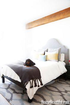 Ikat Links Rug + Chunky Tassel Throw from west elm —via Sheena Murphy Apartment/House Beautiful