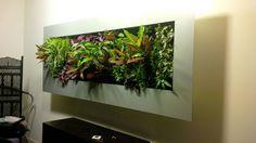 Cadre végétal : par Vertical Flore
