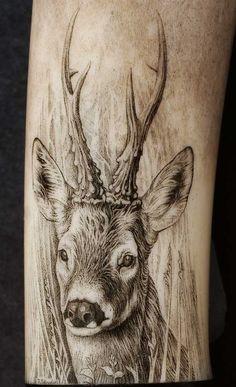 cervo disegno - Cerca con Google