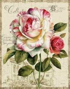 Some beautiful vintage flowers here Vintage Rosen, Vintage Diy, Vintage Ephemera, Vintage Cards, Vintage Paper, Vintage Postcards, Art Floral, Images Victoriennes, Decoupage Printables