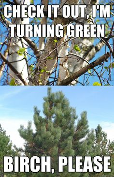 Kinda lame, but I seriously LOL'd when I saw this... Yay Spring!