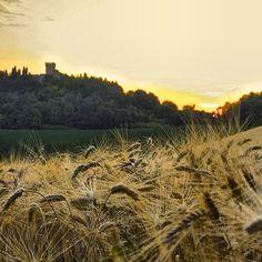 Rocca Montevarmine in Carassai, Le Marche, Italy #carassai #roccamontevarmine #marche #lemarche #italy #piceno