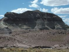 """""""Dinosaur Rock"""" in Petrified Forest National Park"""
