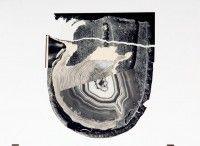 Nicholas Mangan Flohetrauling, 2008 collage, shelf 5 panels: 30 x 24 cm, 30 x 21 cm, 24 x 30 cm, 35 x 25 cm, 30 x 40 cm. White gloss shelf: 183 x 5 cm Courtesy the artist and Sutton Gallery, Melbourne.