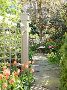 Backyard garden