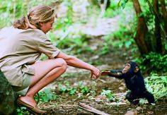 Jane Goodall / icons+heroines