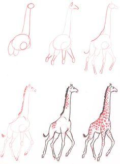 Learn to draw: Giraffe