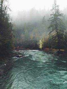 wanderlust, exploring, discover, expedition, adventure, backpacker, nature, into the wild, river, forest