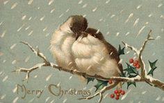1909 antique Christmas postcard
