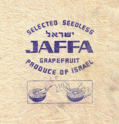 papier fruit Israel