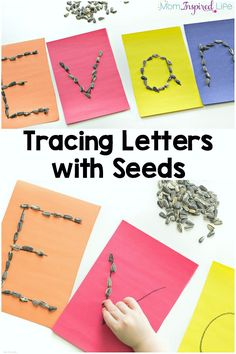 My son had a great time tracing letters with seeds! It is a fun, hands-on alphabet activity that teaches letters and helps to develop fine motor control. Seeds Preschool, Preschool Garden, Preschool Literacy, Preschool Lessons, Kindergarten, Preschool Alphabet, Seed Activities For Preschool, Emergent Literacy, Fall Preschool