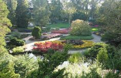 Vibrant Colours, Royal Botanical Gardens, Hamilton, Ontario, Canada.  It is not just the amazing prices and great investment opportunities that Hamilton, Ontario is the 3rd top place in Canada to invest in Real Estate.  It is places like these that the people enjoy.