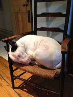Yup, definitely my perfect chair!