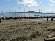 An awesome week at Narrowneck beach #sailing and #rowing for national regatta!! #rangitoto #wearethechampions