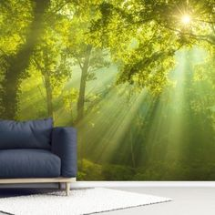 The Forest of Heaven Wallpaper Heaven Wallpaper, Wall Wallpaper, Tree Murals, Wall Murals, Library Images, Beautiful Forest, Woodland, Natural Beauty, Scene