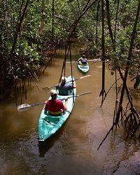 Playa Nicuesa Rainforest Lodge Kayak