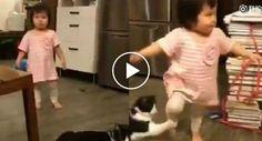 Vídeo De Gato a Colocar Pata Para Criança Tropeçar Torna-se o Novo Sucesso Da Internet http://www.funco.biz/video-gato-colocar-pata-crianca-tropecar-torna-novo-sucesso-da-internet/