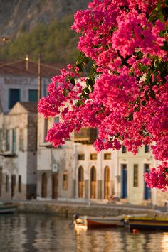Kastelorizo by Adrian D..., via Flickr