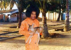 Sai Baba Photos, Sathya Sai Baba, Healing Words, Love And Light, Cosmic, The Secret, Meditation, Lord, Lorde