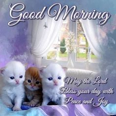 Blessed Sunday Morning, Blessed Morning Quotes, Happy Good Morning Quotes, Good Morning Sister, Good Morning Cards, Morning Blessings, Morning Greeting, Good Morning Friends Images, Cute Good Morning Images