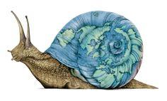 """Hablamos de """"Slow food""""... http://wakan.org/2014/04/06/un-estilo-de-vida-unico-slow-food-y-los-productos-de-km-0/"""