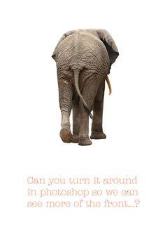 Kunden fragen Designer und die machen daraus ein Poster: http://www.boredpanda.com/sharp-suits-worst-client-comment-posters/