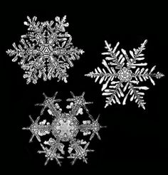 Google Image Result for http://www.mos.org/discoverycenter/system/files/aotm/snowflakes%2Bfro%2Bweb.jpg