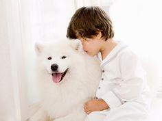 Katrina Tang Photography for Amiki Children Sleepwear AW 13. Boy hugging a white dog #katrinatang #tangkatrina