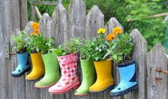 There are a number of reasons why vertical gardening is for you. Old souls love to putter in the garden, but the oldest of souls usually complain about their backs and knees hurting. Vertical gardening enables you to grow veggies without ever bending over or getting on your knees again.