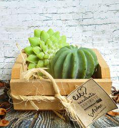 Sabonetes suculentas no caixote de MDF Homemade Business, Candels, Handmade Soaps, Soap Making, Watermelon, Cactus, Professor, Diys, How To Make