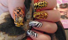 SassyLittleNails: Moyou Nails products review & nailart