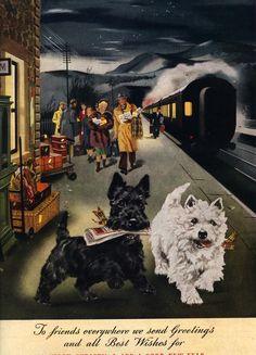 girlinthejitterbugdress.com digs this London News, 1948 vintage Christmas postcard with Scottish terrier / Scotty dog