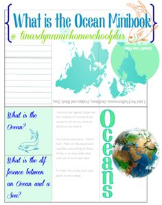 Night of the Moonjellies - What is the Ocean  Minibook