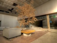 Rolling Acres Mall  Akron, OH Completely Surreal Photos Of America's Abandoned Malls