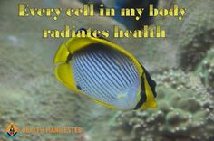 Every cell in my body radiates health - Health Manifested Healthy Inspirational Quotes, Inspiring Quotes, Law Of Attraction Meditation, Law Of Attraction Quotes, Positive Life, Positive Thoughts, Abraham Hicks Quotes, Yoga Meditation, Understanding Yourself