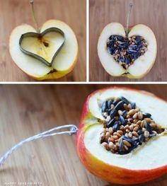 Großen Apfel in der Mitte teilen mit Hilfe eines Keksausstechers ein Herz ausstechen. Mit Vogelfutter- Kokosöl füllen