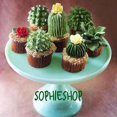 Sucucactus  #sophieshop