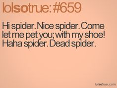 Hi spider. Nice spider. Come let me pet you; with my shoe! Haha spider. Dead spider.