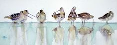 Françoise-Marie Klein Klein, Watercolor Bird, Love You More Than, Flocking, Bird Feathers, Watercolors, Marie, Images, Birds